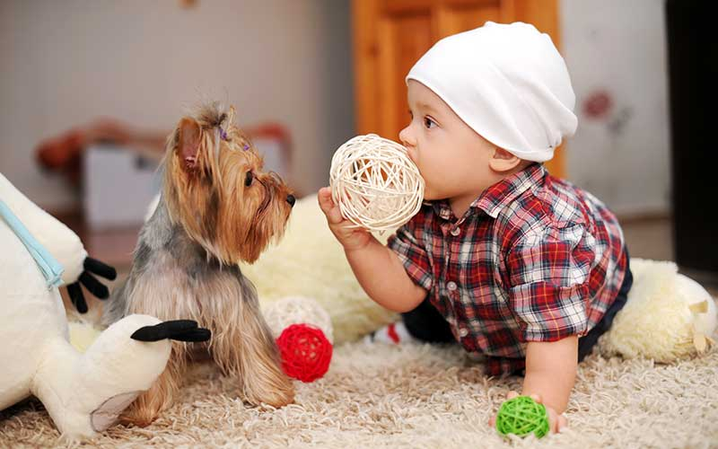 baby with adopted puppy